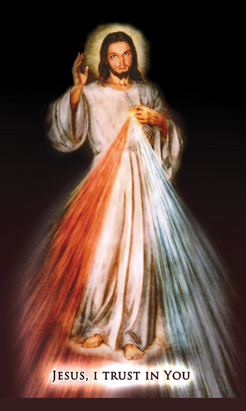 Divine Mercy Holy Cards - 25-Pack