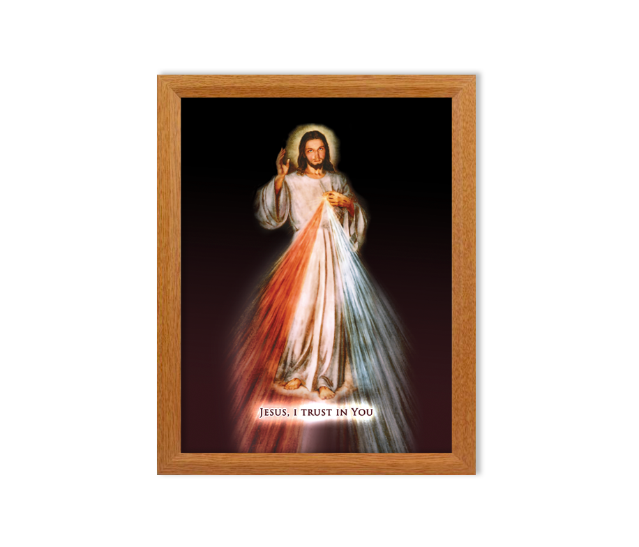 Divine Mercy Jesus I Trust In You Framed Print